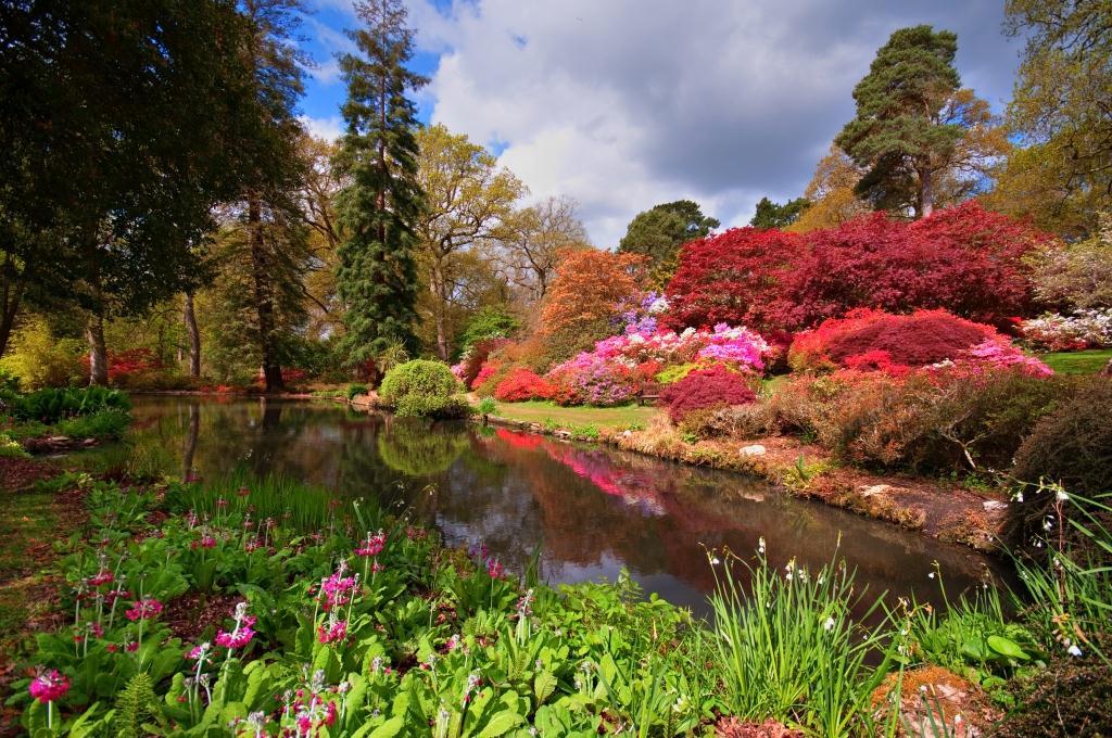 Copyright: Exbury Gardens