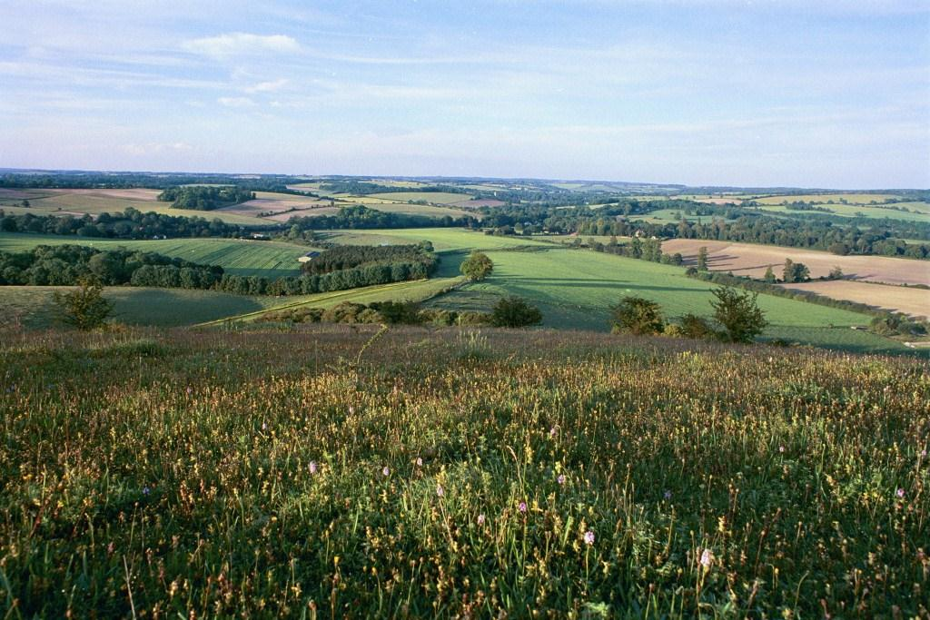 South Downs. Copyright: South Downs National Park Authority